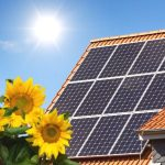 5 Effective Ways to Make Your Home Greener