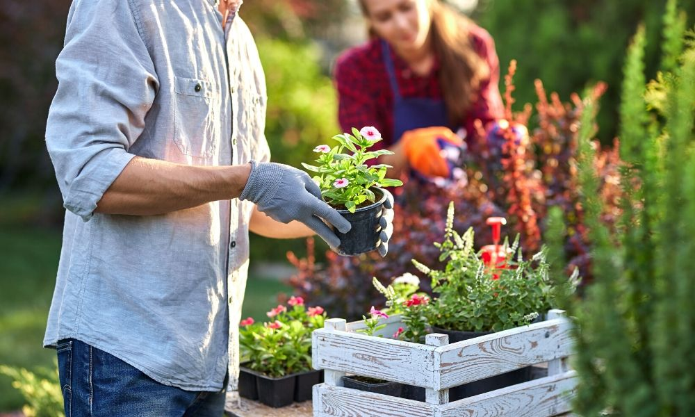 4 Eco-Friendly Gardening Ideas