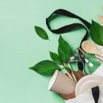 Benefits of Making Your Home Eco-Friendly