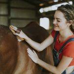 4 Interesting Hobbies for Animal Lovers