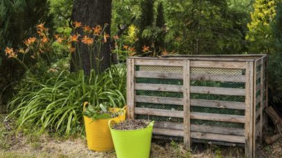 Mastering Manure: 4 Tips for Making a Compost Pile